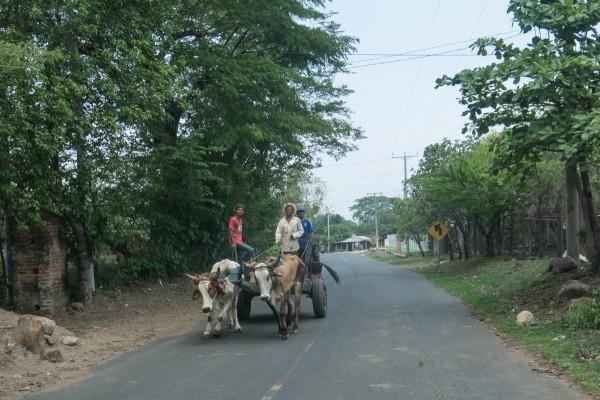 20130523 IMG 1311 600x400 Guatemala, El Salvador, Honduras